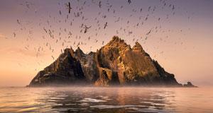 Pictured: Seabirds gather at Little Skellig.