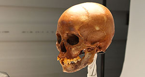 Pictured: Naia's skull.