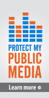 Learn More at the Protect My Public Media site